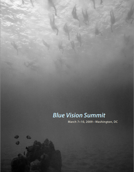 Download the 2009 Blue Vision Summit program