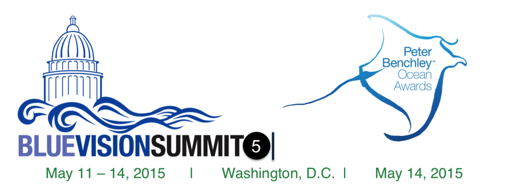 blue-vision-summit-logo-2015