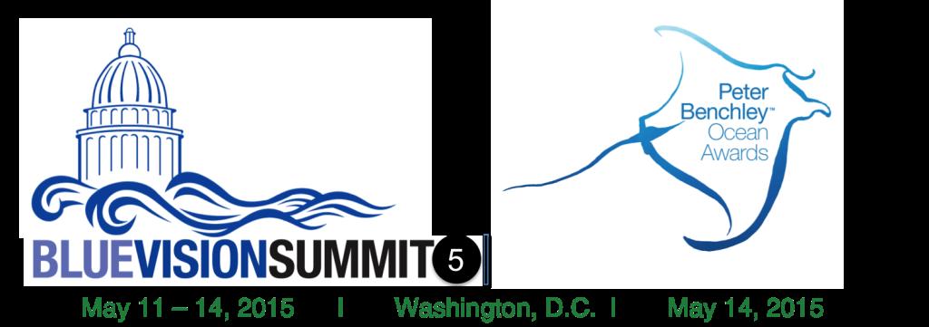 blue-vision-summit-logo-2015