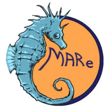 mare-logo
