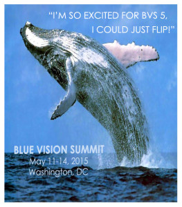 Meme-10_whale-flip