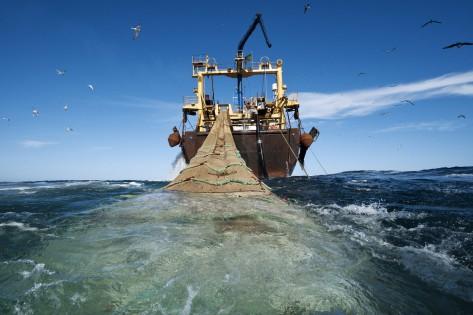 Atlantic Ocean, Mauritania, 4 March 2010 The 120 meters pelagic trawler Johanna Maria is owned by Dutch company Jaczon, sailing under Irish flag. Johanna Maria is fishing for Round Sardinella (sardinella aurita) under EU:s fisheries partnership agreement. It's represented by the Pelagic Freezer Association (PFA).