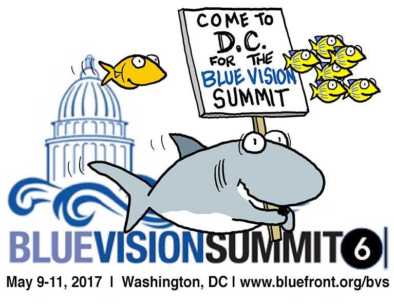 2017 Blue Vision Summit