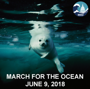 (C) 2018 March for the Ocean / Brian Skerry